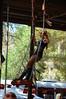 Swinger at the Broken Spoke