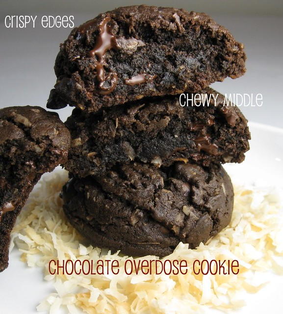 double chocolate-coconut cookies