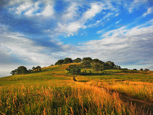 Color Landscape: Frederick's Hill