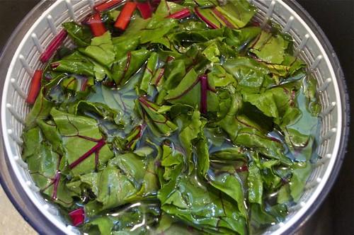 beet greens 11