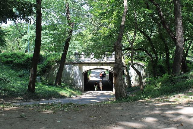 A Walk Along Central Park South