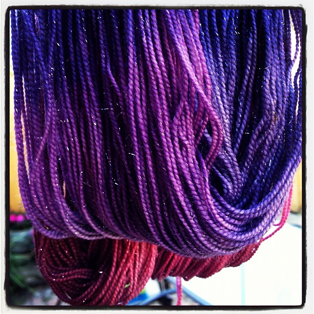 Paris looks pretty snazzy in the new sparkly yarn!  #yarn #knit #knitting #destinationyarn