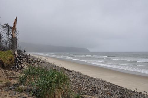 Cape Lookout, Tillamook County