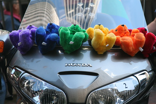 SF Pride: Rainbow Bears