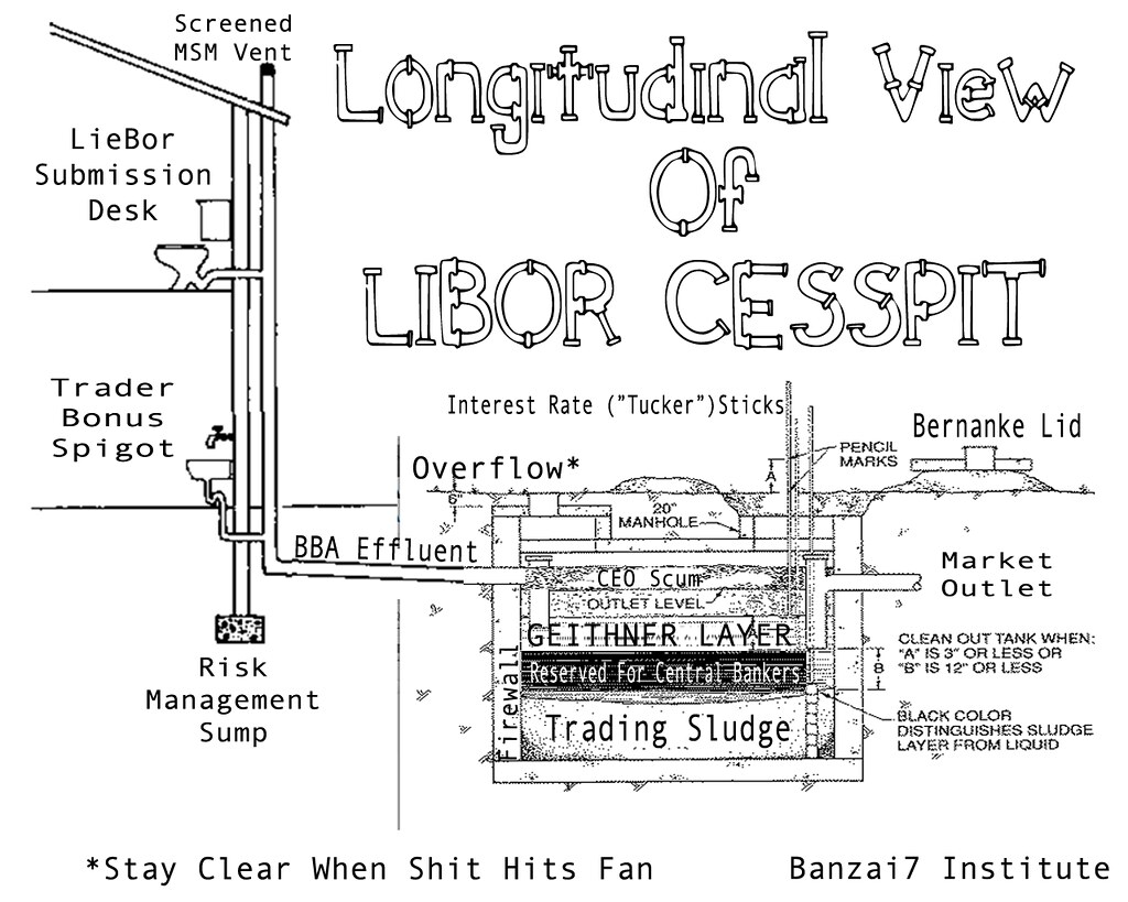 LONGITUDINAL VIEW OF LIBOR CESSPIT