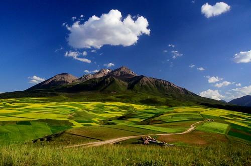 Qilian mountain 牛心山