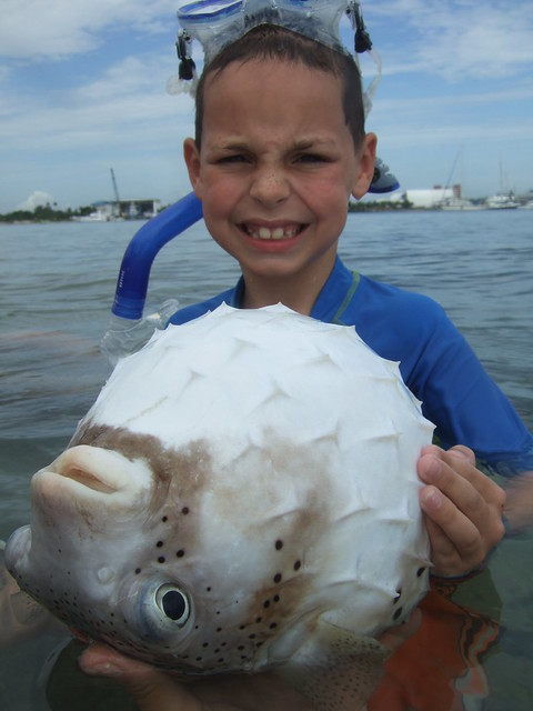 Fletcher with a giant porcupinefish!
