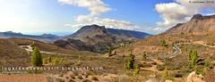 El valle de las mil palmeras (Fataga, Gran Canaria)