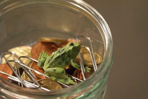 froschkönig schwimmt im geld