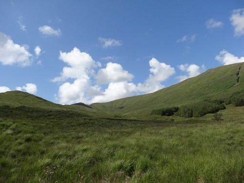 Green Hills of Mull