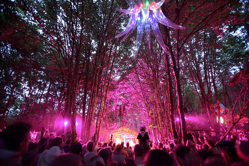 Pickathon Woods Stage