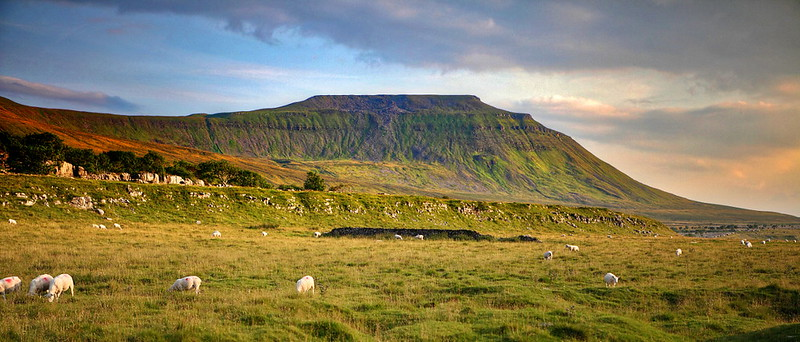 A photo of low evening sun on Ingleborough, a mountain in the Yorkshire Dales national park, UK.