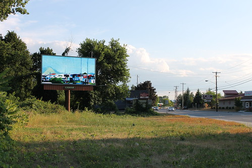Albany Billboard Art Project 2012 - Julia Cocuzza (24)