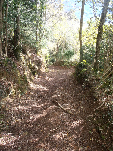 Sentier des Carrières 167