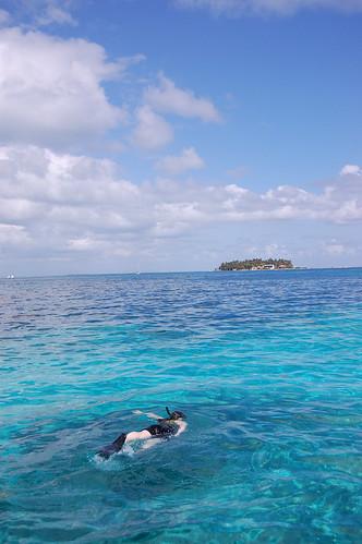 Snorkeling MesoAmerican Reef