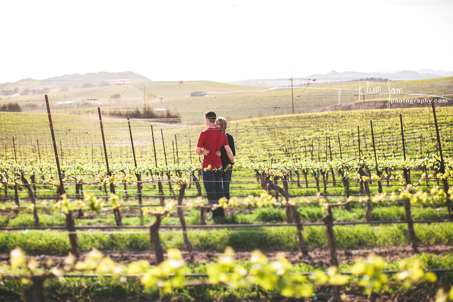 RebeccaMike-Engagement-vineyard-shellbeach-california-plumjamphotography-06