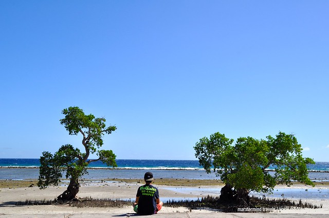 Siquijor Mangroves Area