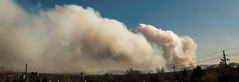 wildfire(0.0), cloud(0.0), fire(0.0), smoke(1.0),