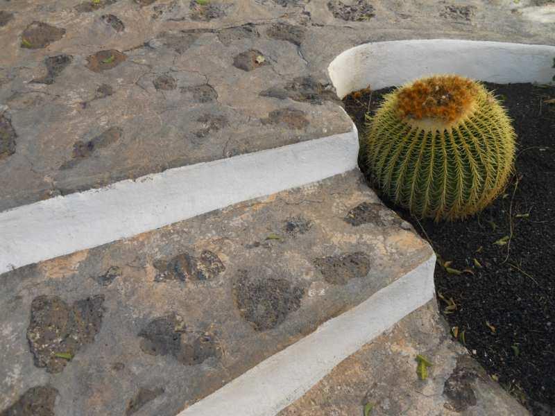 Escalera en jardines Omar Sharif Lanzarote 10