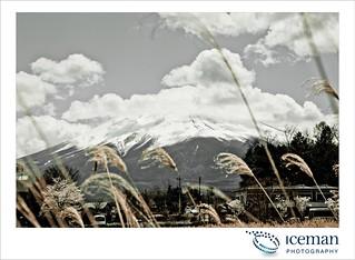 Mt Fuji 125