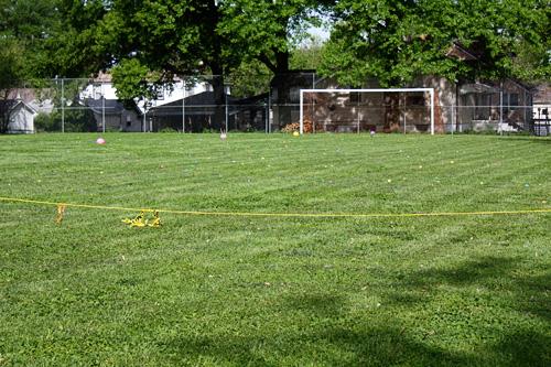 Eggs-on-field