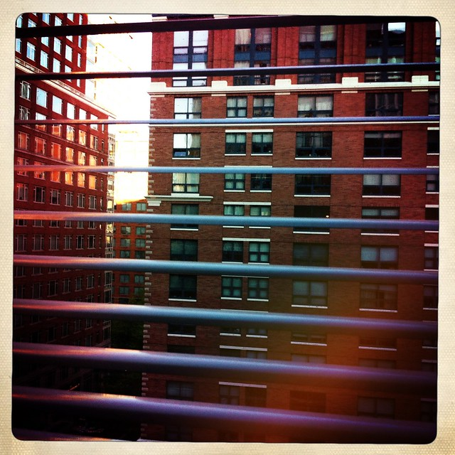 Morning in TriBeCa.