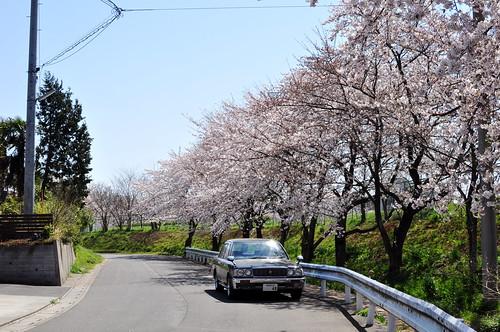 1989-1995 Toyota Crown Sedan (S130)