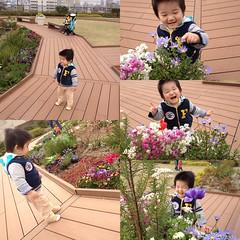 アトレ恵比寿の屋上ガーデンにて(2012/4/15)
