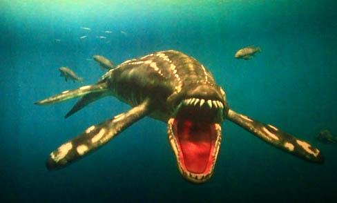 5T57海生館-海洋爬行類劇場-滑齒龍