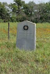 Photo of Black plaque № 20775