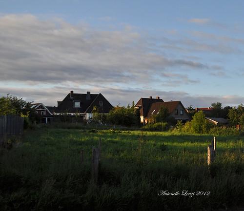 Hohenfelde - Schleswig Holstein - (D) Giugno 2012