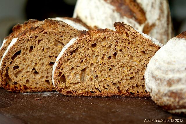 desem bread 13 morcov