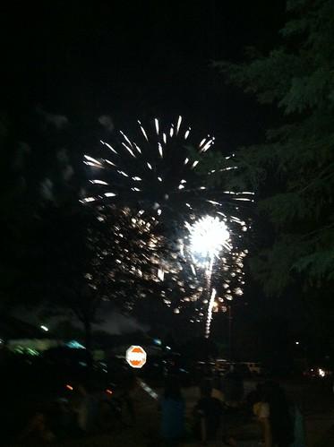 Livonia Spree Fireworks