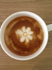 Today's latte, ICQ.