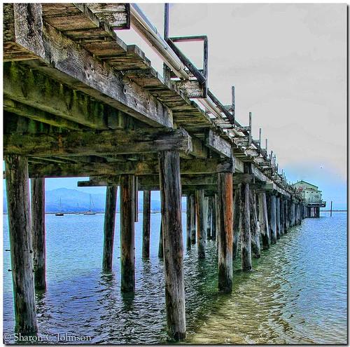 Johnson Pier