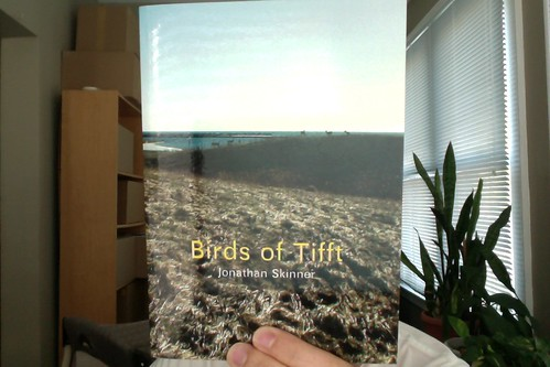 Birds of Tifft