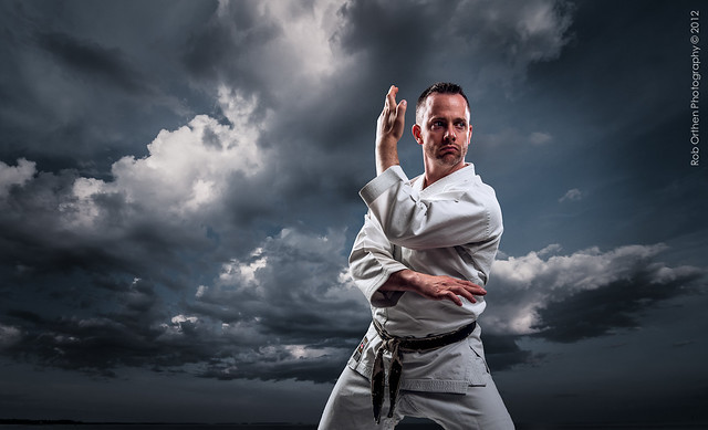 Martial Arts Master Scott Cohen II