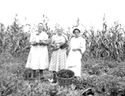 Garden produce, Culp, Arkansas