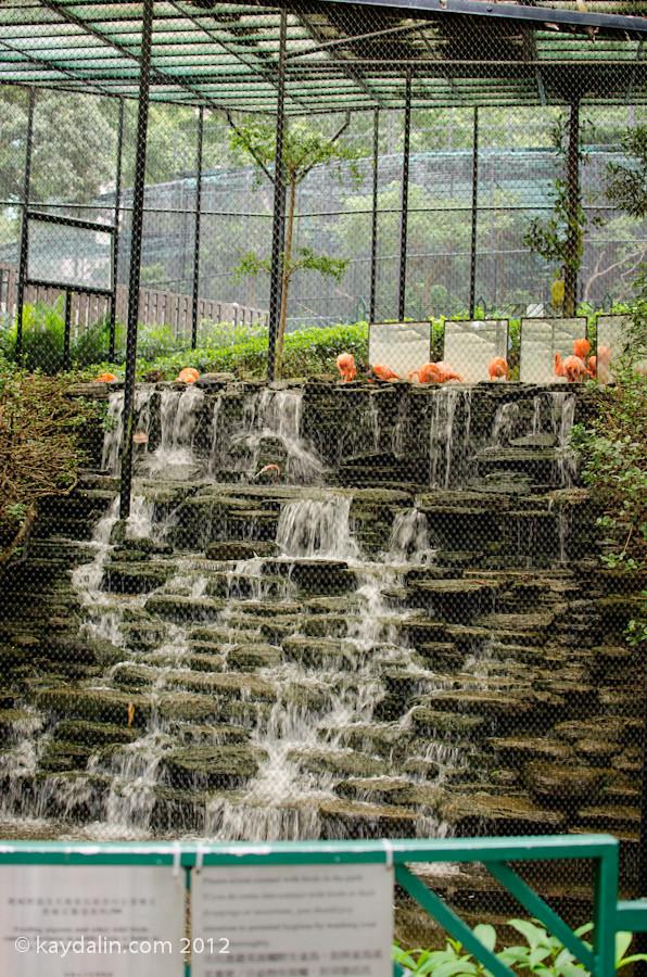 HK Botanical Gardens