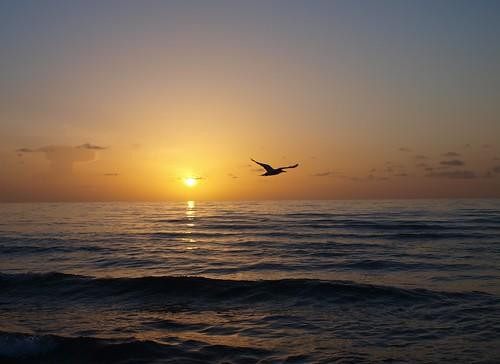 sunrise day clear