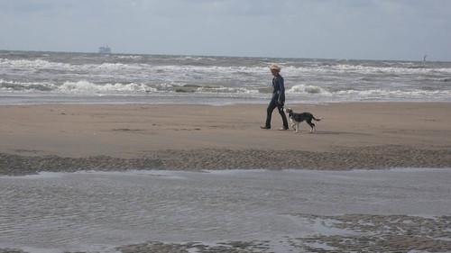 Border on the beach
