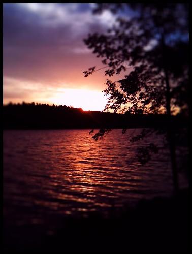 summer lake nature minnesota sunrise outdoors fishing scenery scenic voyageurs cranelake voyageursnationalpark cranelakemn handbergsmarine