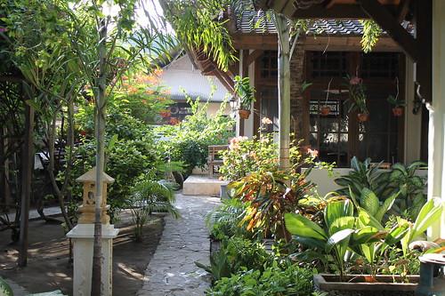 Marta's garden