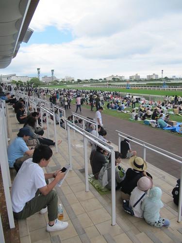 函館競馬場の一般席最前部