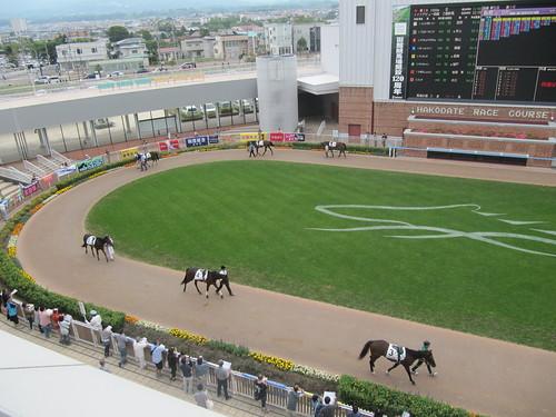 函館競馬場の光の広場からパドックを見下ろす