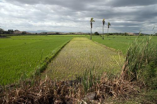 perù provincia paesaggi piura talara