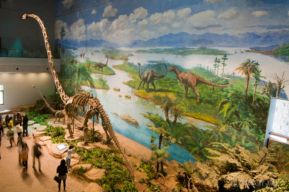 Dinosaur exhibit at Zigong Dinosaur Museum