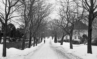 Veien inn til Østmarka sykehus (1981)