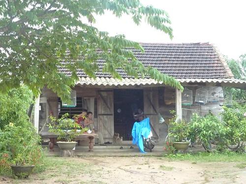 V 12-Route BMT-Nha Trang (17)