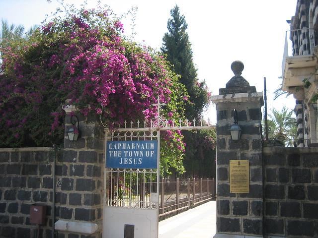 Header of Capernaum